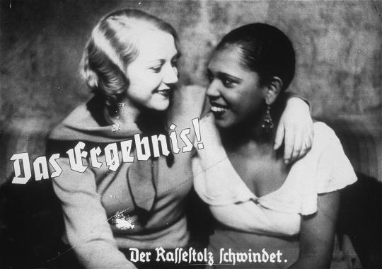 """""""The result -- racial pride dwindles."""" Nazi propaganda poster that would not be out of place on Chateau Heartiste"""