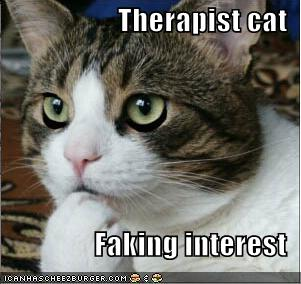 therapist-cat